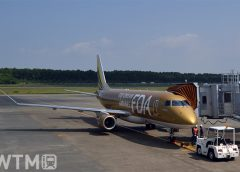 ゴールドカラーのFDA9号機/エンブラエルERJ-175(Katsumi/TOKYO STUDIO)