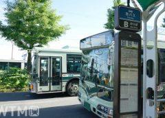 京都市バス(umii/TOKYO STUDIO)
