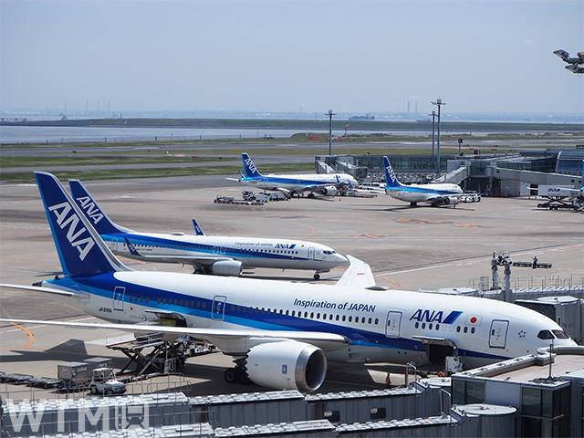 羽田空港に停泊中のANA機(Katsumi/TOKYO STUDIO)