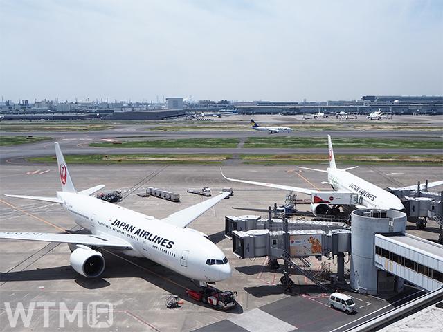 羽田空港に駐機中のJAL機(Katsumi/TOKYO STUDIO)