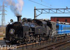 東武「SL大樹」で運行される「C11 207」号機蒸気機関車(toki100/写真AC)