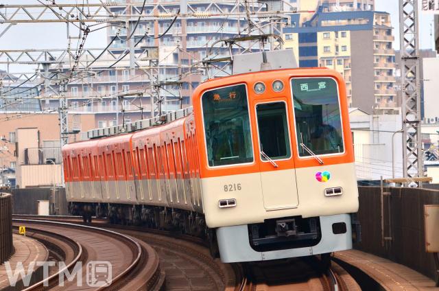 阪神8000系電車(たろとれ/写真AC)