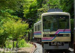 鞍馬線貴船口駅に到着する叡山電鉄800系電車(ヤンリー/写真AC)