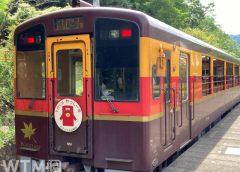 観光列車「トロッコわっしー号」で運行しているわたらせ渓谷鐵道WKT-550形気動車(SakuraiAmi/写真AC)