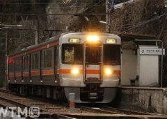 飯田線伊那小沢駅に停車中のJR東海313系電車(たまくじら/写真AC)