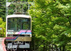 貴船口駅を発車する叡山電鉄800系電車(ヤンリー/写真AC)