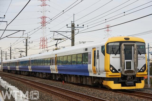 JR東日本E257系500番台電車(ちゃんこちゃんこ/写真AC)