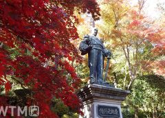 紅葉に囲まれた東郷公園の東郷平八郎銅像(fuku41/写真AC)