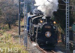 「SL大樹」として運行している東武鉄道の蒸気機関車「C11形207号機」(実生の桃/写真AC)