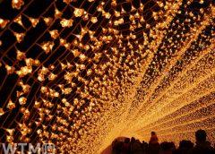 「なばなの里イルミネーション」の光のトンネル「花回廊」(rrrriiiissaa/写真AC)