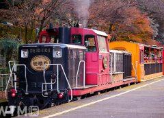 嵯峨野観光鉄道のDE10形ディーゼル機関車とトロッコ客車(しん0726/写真AC)