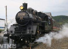「SLもおか」で運行している真岡鐵道の蒸気機関車C12形66号機と50系客車(忍者くん/写真AC)